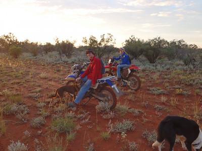Christine Ferguson's 2011 goat muster