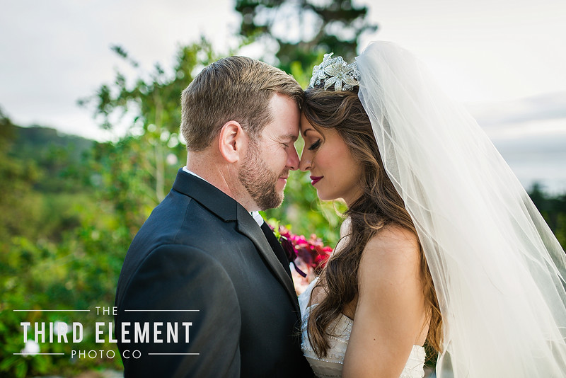 Third Element Photo Co Lina + Rett Carmel Bay Area Wedding Photographer_0037.jpg