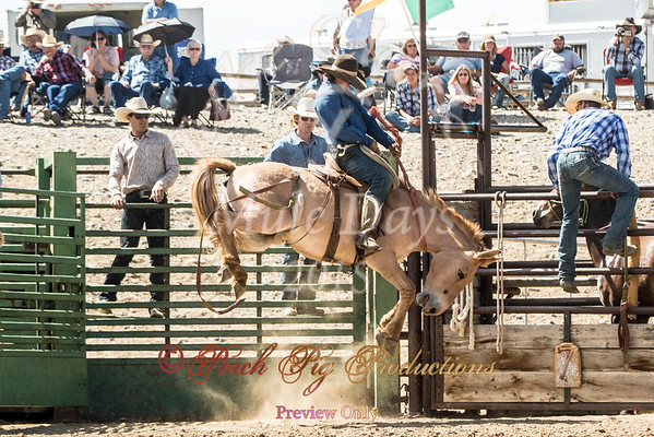 Jake Clark Rodeo