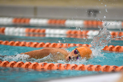 2015 Platte County Swim and Dive