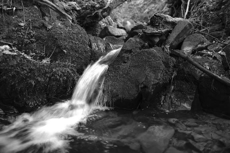 GALASHIELS, SCOTLAND - January 06:       (Photo by Rob Gray / Freelance)