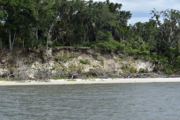 Terrapin Point - Cumberland Island Documented 07-28-19