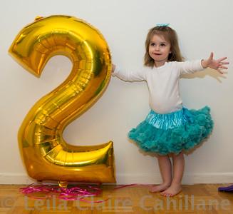 Ava's 2nd Birthday