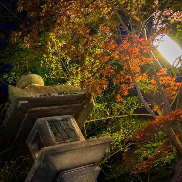 in Kyoto, Japan.