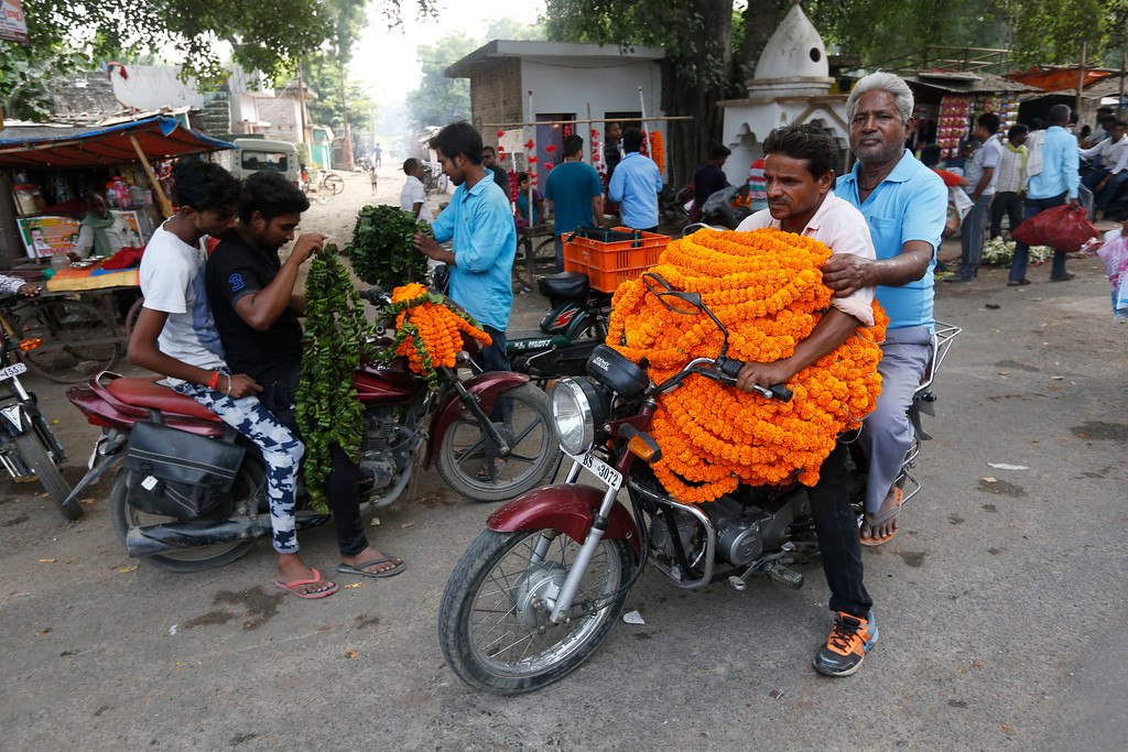 . Indians transport bundles of marigold flower garlands, commonly used to decorate homes and perform rituals, on a motorbike during Diwali festival in Allahabad, India, Thursday, Oct. 19, 2017. Hindus light lamps, wear new clothes, exchange sweets and gifts and pray to goddess Lakshmi during Diwali, the festival of lights. (AP Photo/Rajesh Kumar Singh)