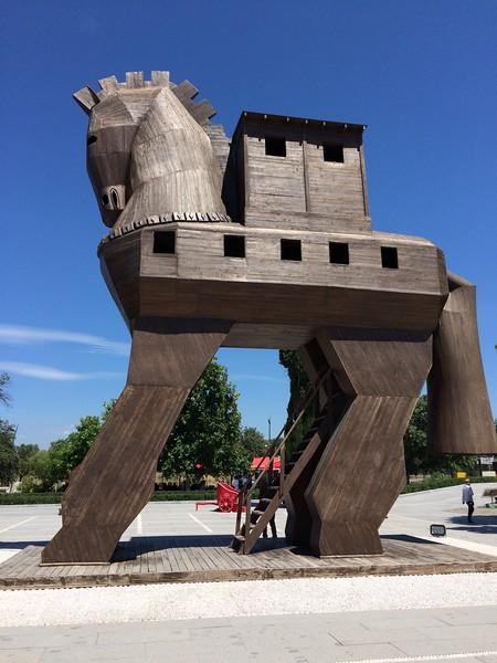 Horse Playground - Erin Metro