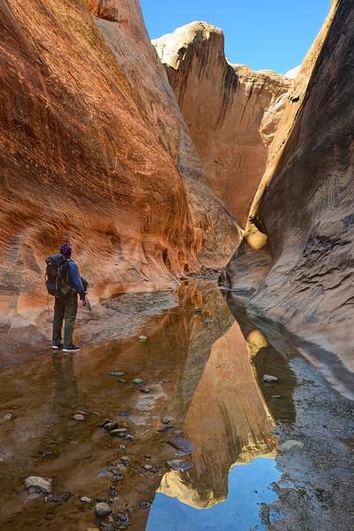 (2017-May 8-13) Druid Arch, The Needles, Halls Creek Narrows.  Canyonlands and Capitol Reef National Parks, Utah.