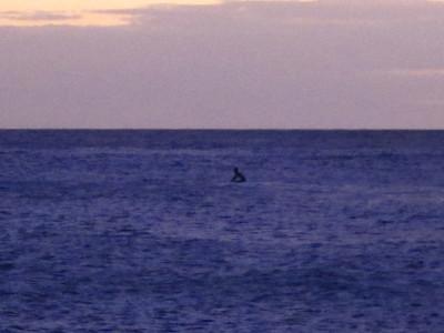 Kauai 8.22.11