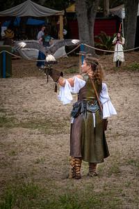 Renaissance Falconer