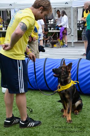 Canine Companions Walk 'n Roll DC 2014
