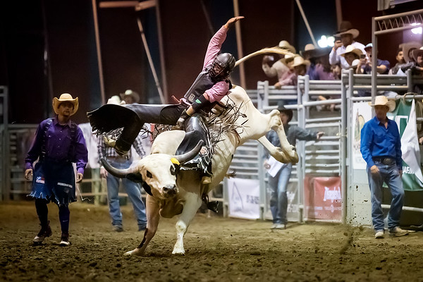 Norco Fair Junior Bull Riding - Saturday