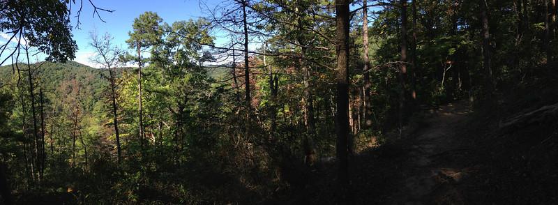 Chestnut Knob Trail - 1,870'