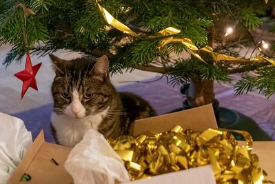 Dezember 2019: Weihnachten