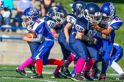 Vista Jr Eagles vs Folsom Jr Bulldogs 10-18-2014
