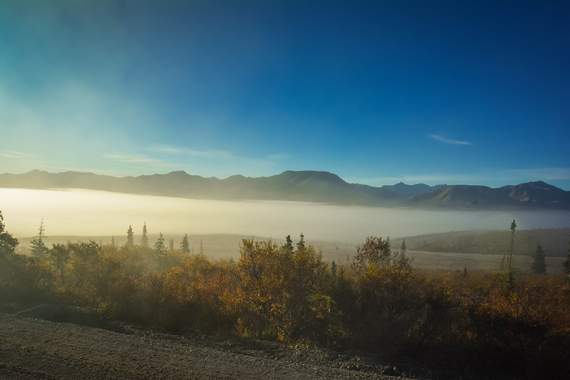 Denali-National-Park-60.jpg