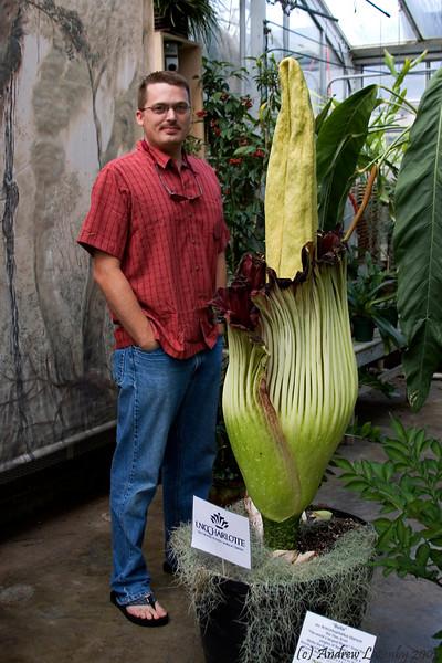 Titan Arum UNC Botanical Garden July 3