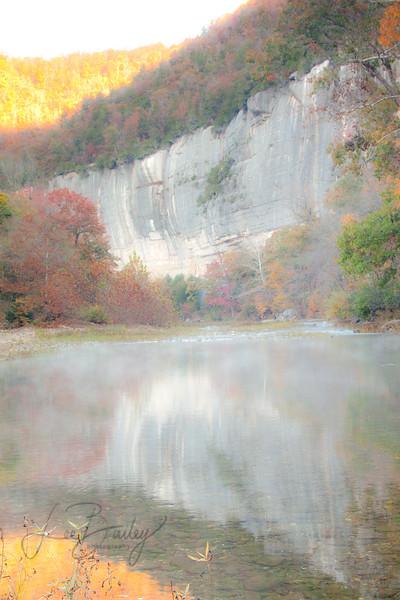 Steel Creek Reflection
