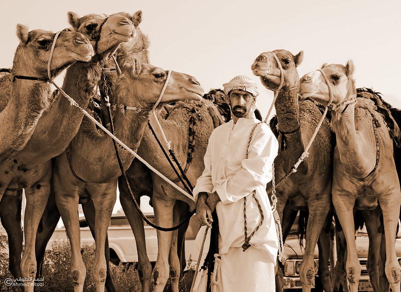 Camel Race  (12).jpg