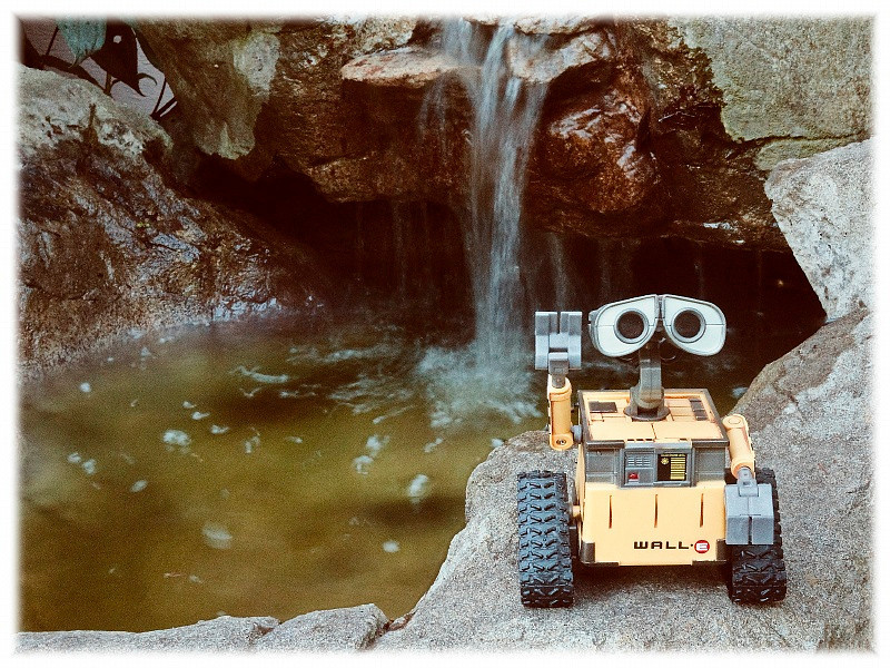 3 Sept 2010: WALL-E says hi from vacation.