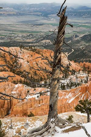 Utah,  Bryce Canyon, Zion, Longhorn Ranch Life, etc.