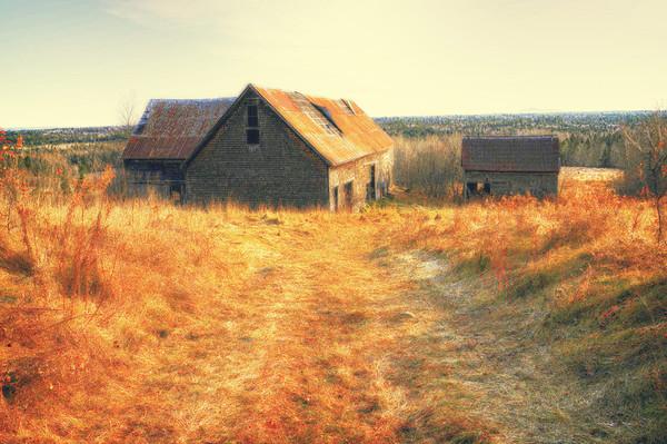 Farms no more
