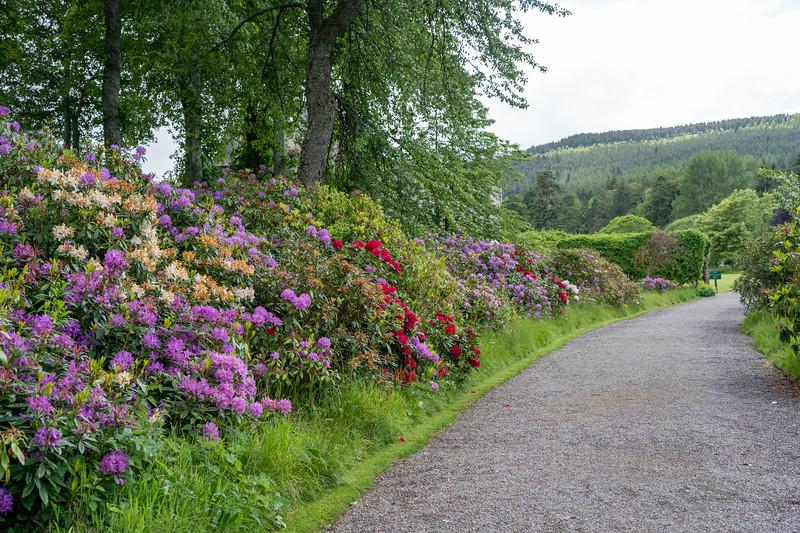 Gardens at Ballindalloch Castle