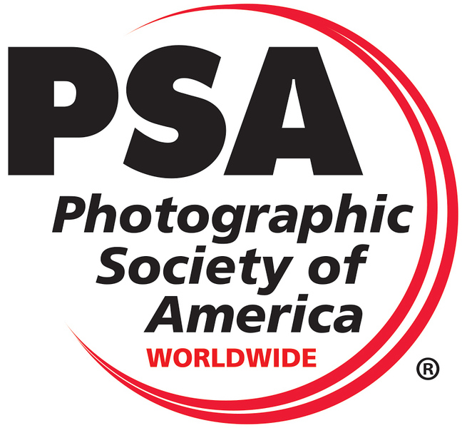 PSA Logo Worldwide