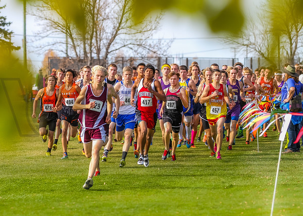 2015 XC State - Class A - Boys