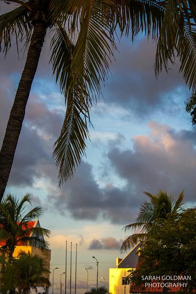 Bonaire-photography (10).jpg