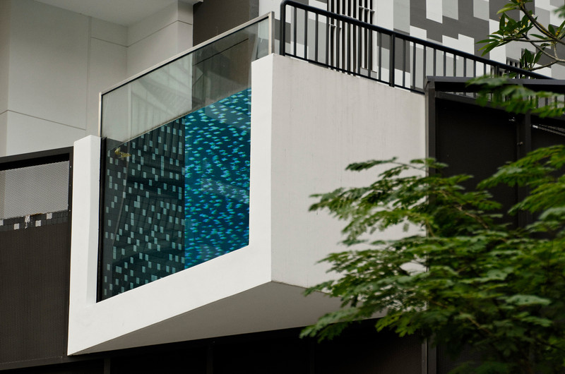 At the edge - Apartment along Irrawaddy Road, Singapore