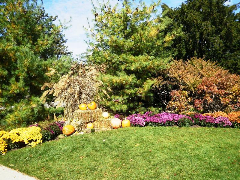 Morton Arboretum Oct 2009