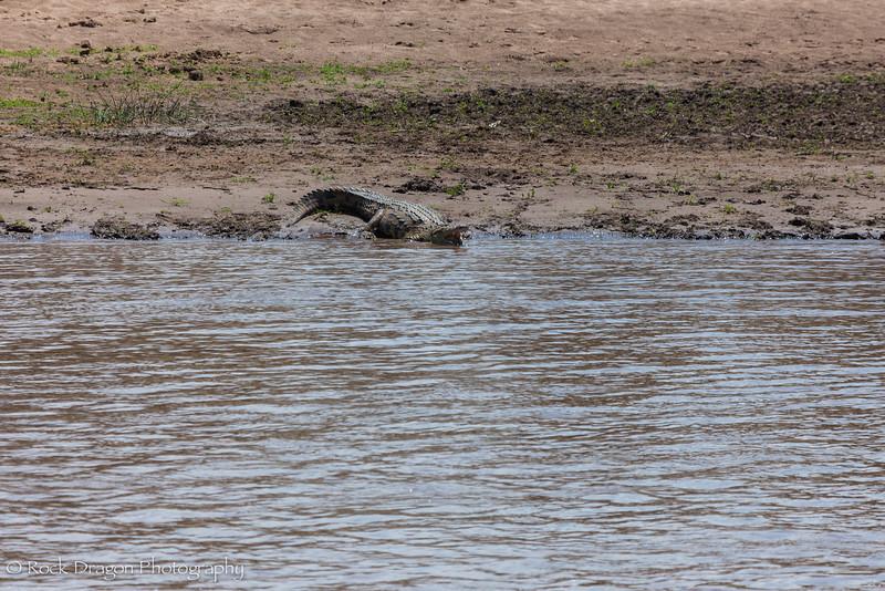 North_Serengeti-19.jpg