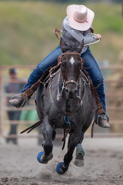 2019 Rodeo A (580 of 1320).jpg