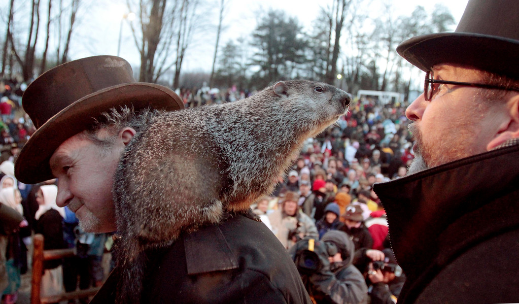 . Punxsutawney Phil, the weather predicting groundhog, center, stands on the shoulder of one of his handlers John Griffiths while looking at other handler Ben Hughes, after the Groundhog Club claimed that Phil did not see his shadow and winter has ended on Groundhog Day, Wednesday, Feb. 2, 2011, in Punxsutawney, Pa. (AP Photo/Keith Srakocic)