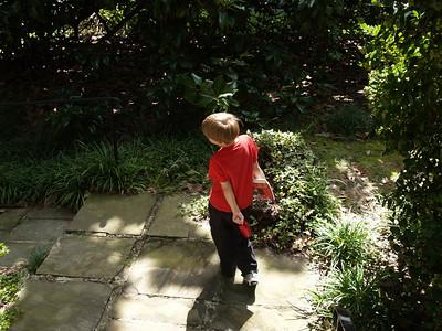 Butterflies & Brookside Gardens 9/13/2009