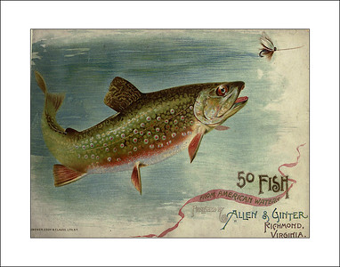Fishing Prints of 1889
