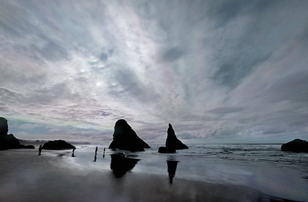 Coastal Captures - Steve