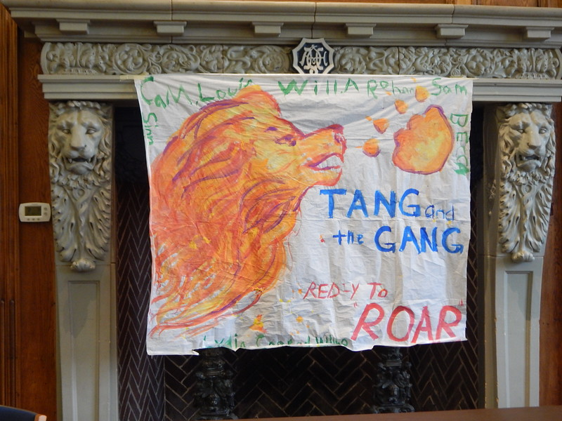 Lion Term 2 - NN roving 034.jpg
