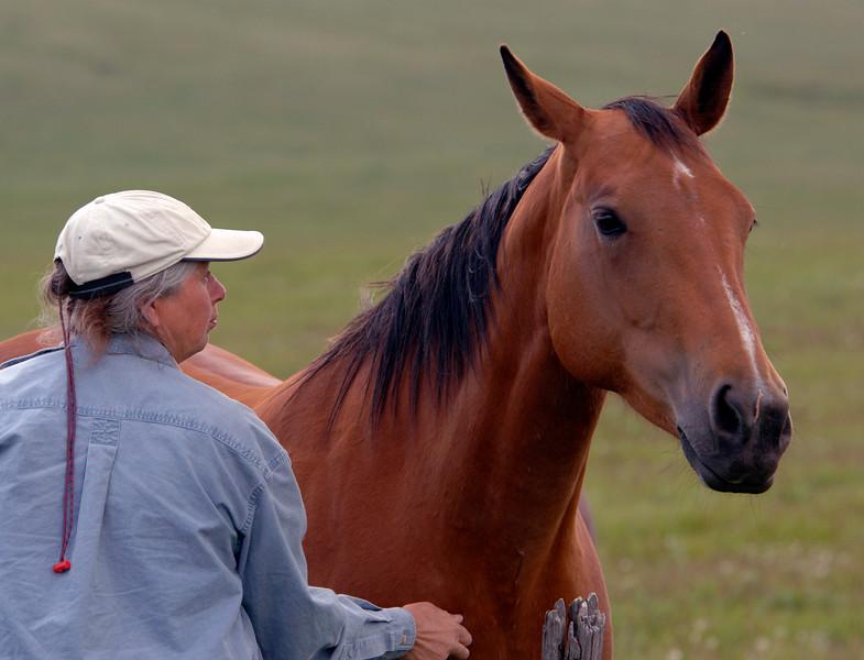 Heidi found the sweet scratch spot on a friendly horse