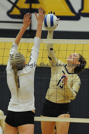 West Albany vs. West Salem HS Volleyball
