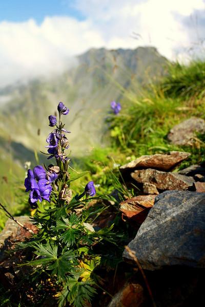 Transfagares Mountains, Romania