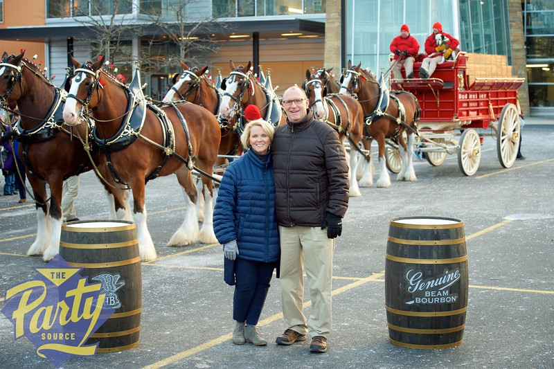 Clydesdale Portraits 229.jpg