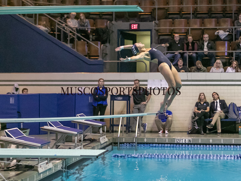 Swimming-diving vs Seton Hall_1189.jpg