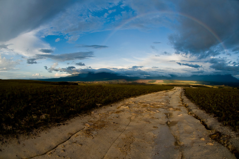 La Gran Sabana National Park, Bolivar State, Venezuela.