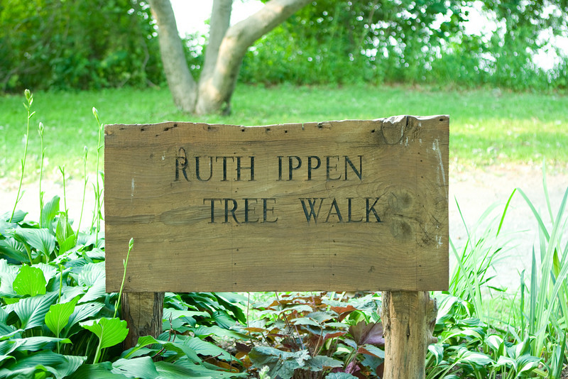 "The walkway is the ""Ruth Ippen Tree Walk""."