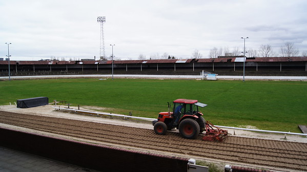 ShawField dog Track (G)