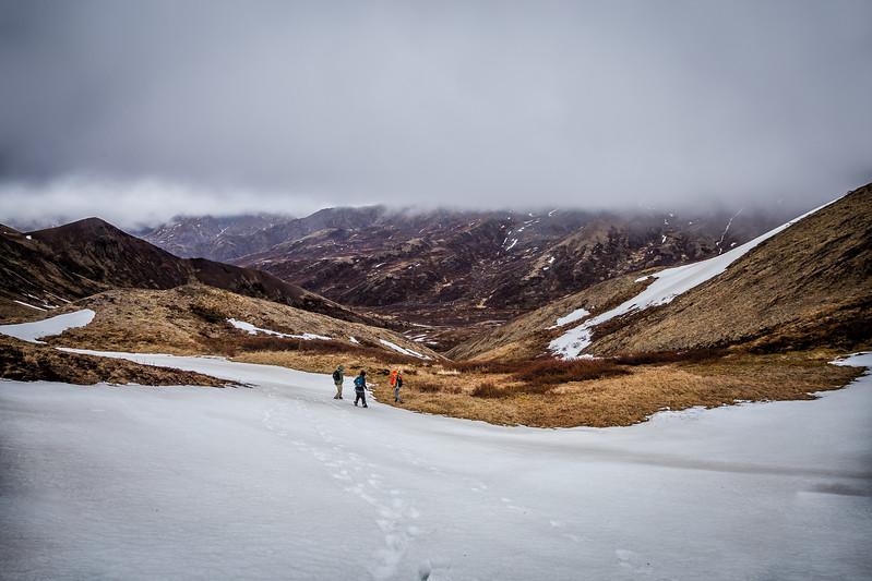 Heli Hiking Denali State Park Alaska