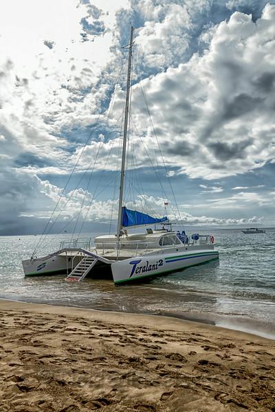 Maui Dreaming