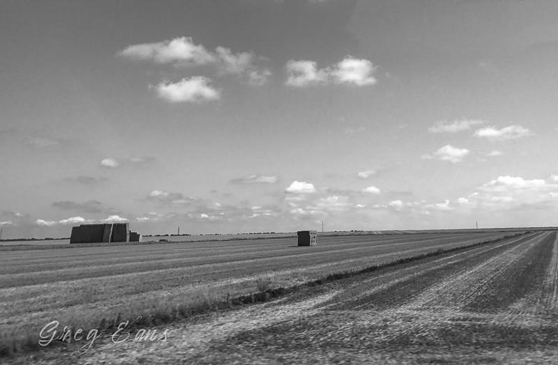 Hay field in Spain in the Iberian countryside between Barca d'Alva, Portugal, and Salamanca, Spain.