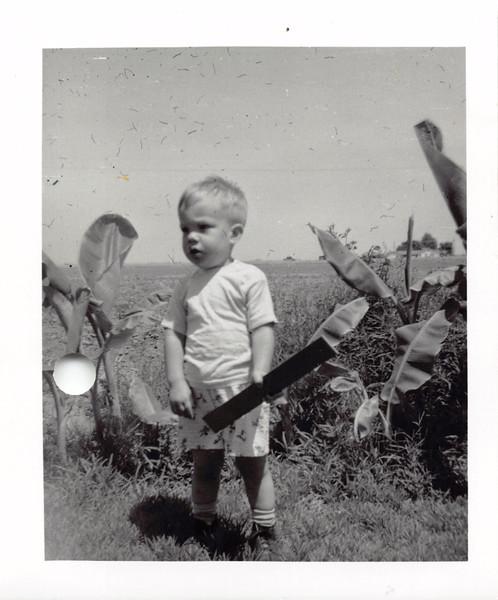 David, 1954